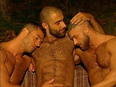 Puaria gay com musculosos